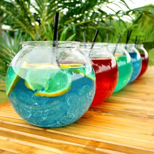 Individual Plastic Cocktail Fish Bowl 105.5oz / 3ltr