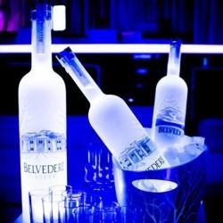 Individual LED Glow Bottle LightPads (Premium)